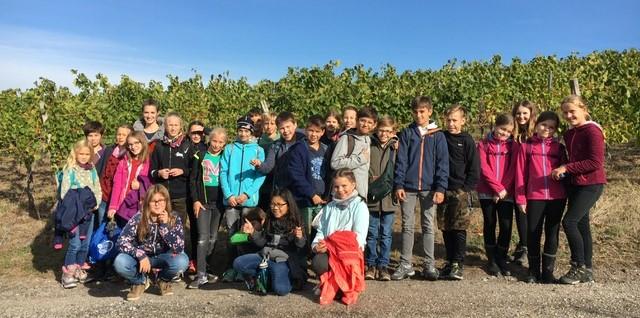 Weinbauprojekt Teil I 1819 (5)