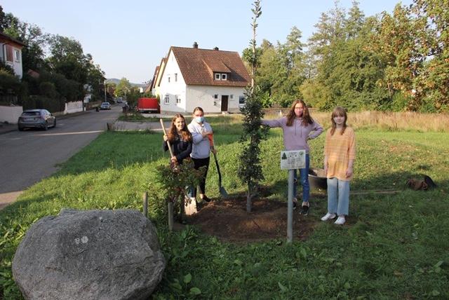 baumpflanzen-michelbachpark-2020-ev-pdg-obersulm (3)