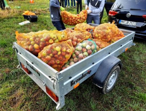 3,5 Tonnen Äpfel für den leckeren PDG Apfelsaft
