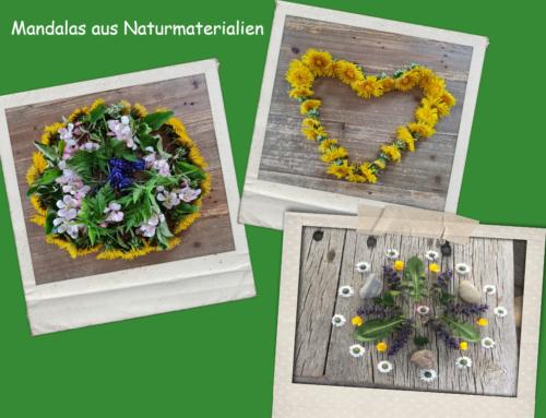 Challenge der Schulsozialarbeit: Kunst aus Naturmaterialien