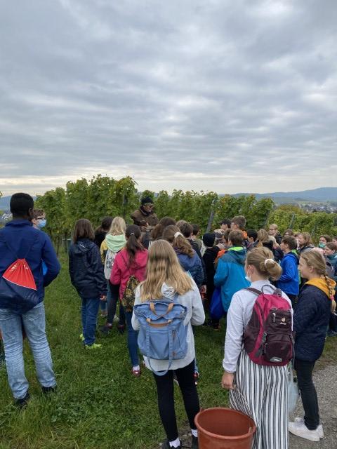 weinbauprojekt-pdg-2021 (1)